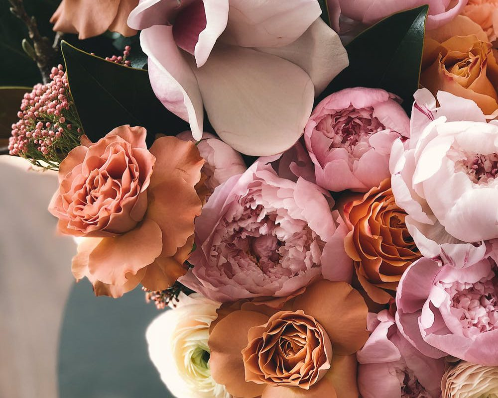 roses antique pink