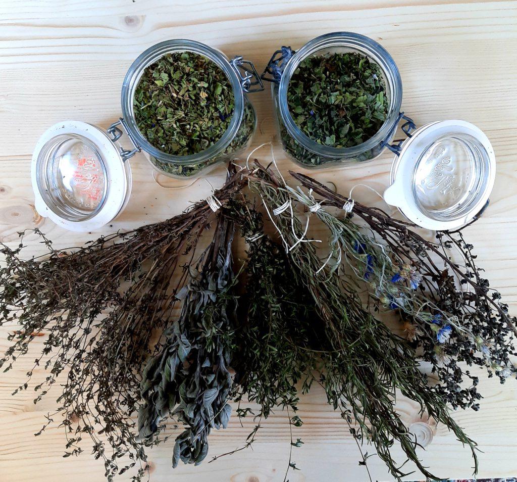 erbe aromatiche secche